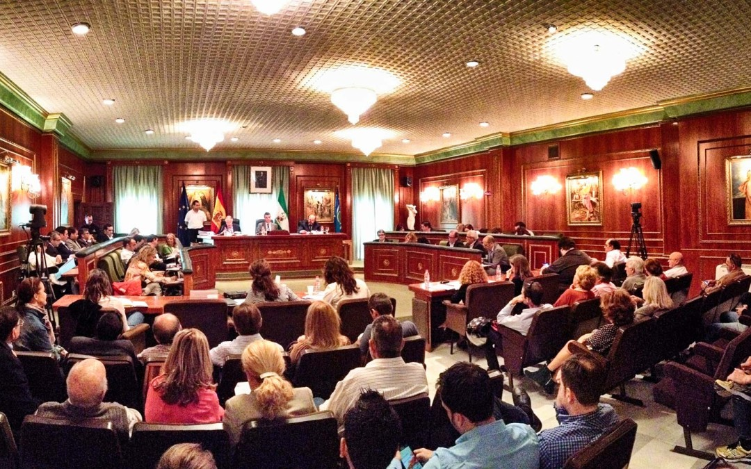 Participación en el Pleno de Febrero 2016